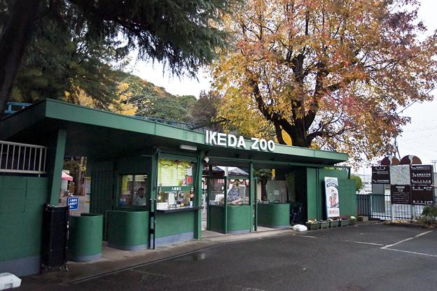 Photos: ikeda111203001