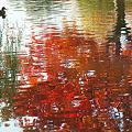 写真: 水彩紅葉