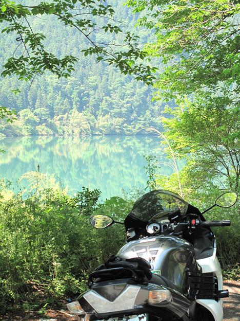 写真: IMG_9440 中野方川を望む