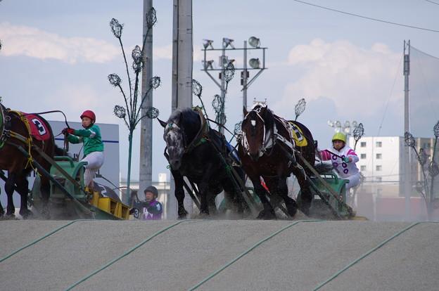 写真: ばんえい競馬
