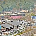 道の駅川根温泉
