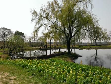 川島環境楽園