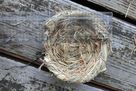 ワラ巣の工作