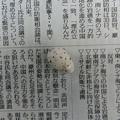 写真: 孵らなかった卵