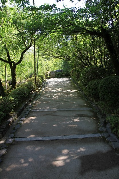 Photos: IMG_0613神苑・南神苑(平安の苑)