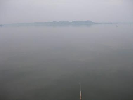 霞ヶ浦で鯉釣り