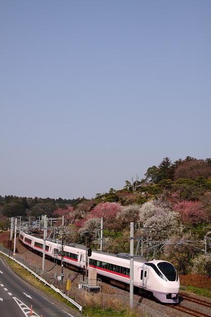 Photos: 特急ときわ70号