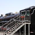 写真: 公園機関車