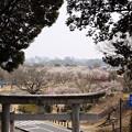 茨城県護国神社から見る水戸市街