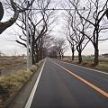 写真: DSC00256.JPG