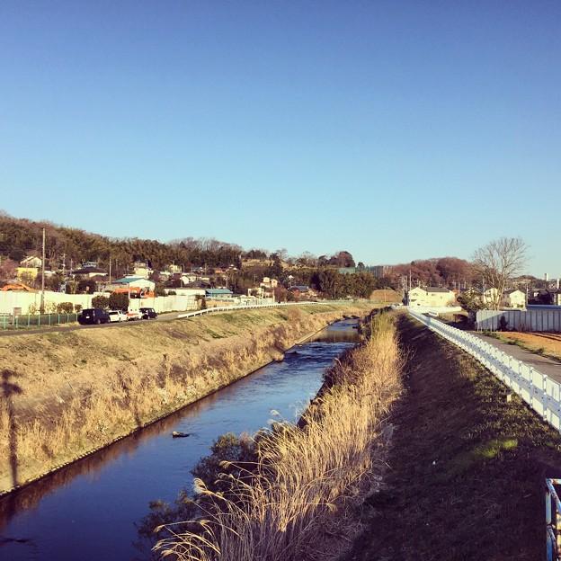 150326 鶴見川