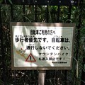 写真: 150502 栗木緑地