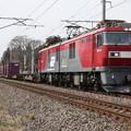 2095レ EH500-10牽引 (7)