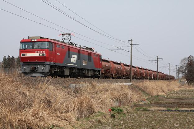 Photos: 安中貨物 5094レ EH500-25牽引 (9)