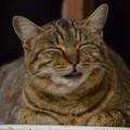 可愛い笑顔。