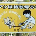 Photos: 犬糞~岐阜市