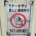 Photos: 犬糞 ~糸魚川市