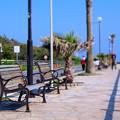 写真: 御宿 海沿いのベンチ