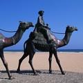 写真: 御宿 月の砂漠