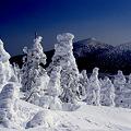 写真: 樹氷原・宮城蔵王