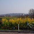 Photos: ぽかぽか陽気♪