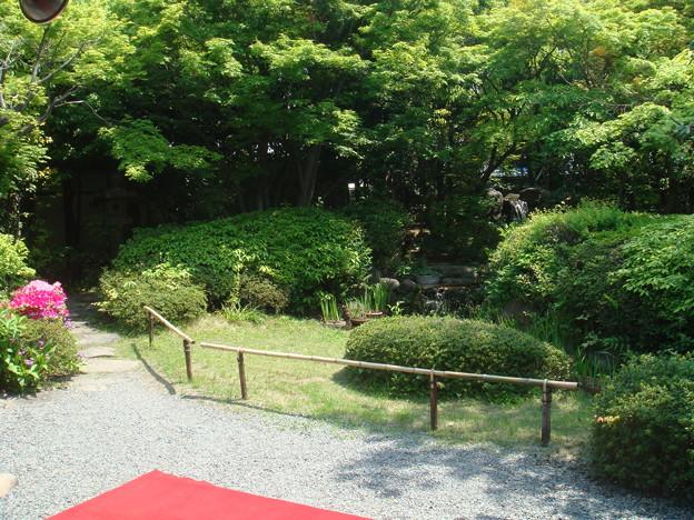 平野郷がんこ寿司にて