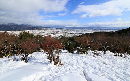 嵐山モンキーパーク11