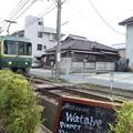 Photos: レストランわたべ1
