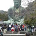 Photos: 鎌倉大仏2