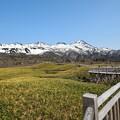 写真: 知床連山と遊歩道 (3)