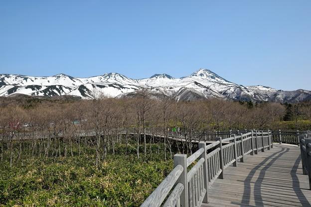 知床連山と遊歩道