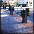 Christmas Wreaths 12-20-11