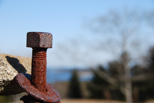 Rusty and the Sea 3-11-12