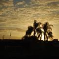 写真: Sunrise 3-8-15