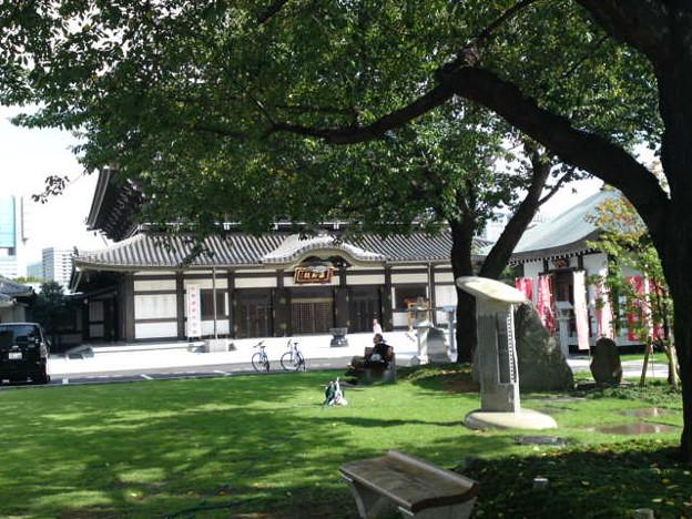 高野山東京別院の庭で一服。...