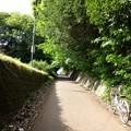 Photos: 150503散歩37