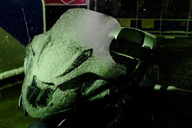 Photos: 雪まみれの帰宅