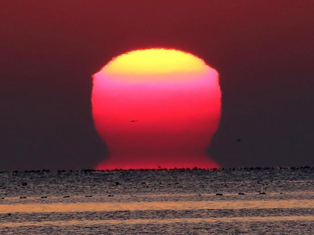 変形した太陽#4