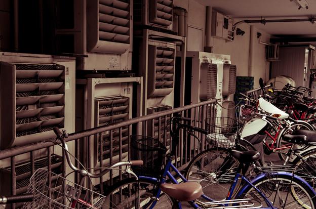 排気と自転車