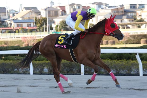 ララベル 返し馬(第61回 桜花賞)