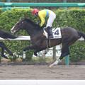 Photos: タニノタキシード レース(15/04/05・4R)