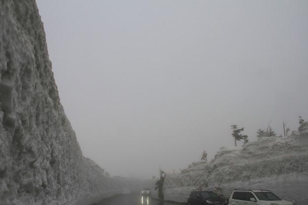 八甲田雪の回廊