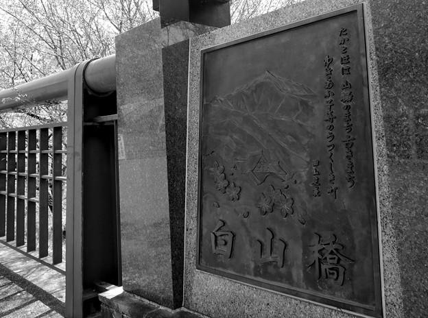 Photos: 白山橋