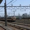 Photos: 485系とE231系