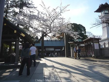 150328-伊勢山皇大神宮 (9)