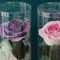 クレイバラ一輪飾り花の部アップ