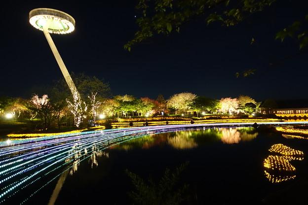 UFOとの遭遇 (7)夜はキラキラ光ってます