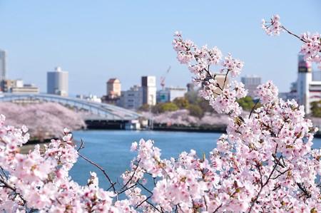 川崎橋から桜宮橋方面を