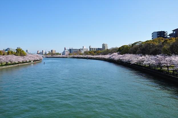 川崎橋からのながめ