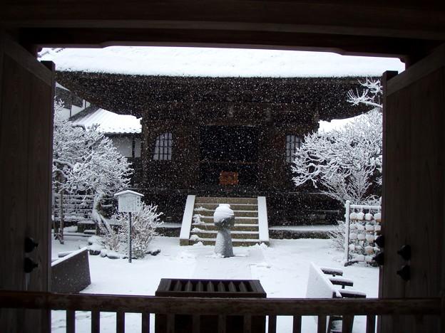 Photos: 円覚寺仏日庵20120229
